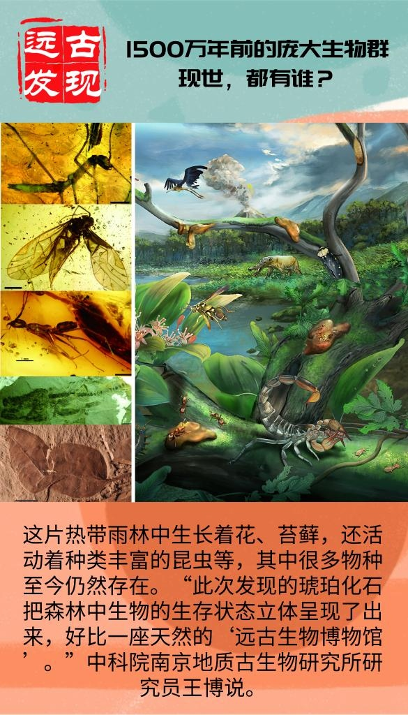 科学家发现1500万年前的化石宝库