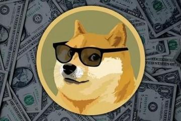 狗狗币价格半年内上涨超过260倍超过几乎所有投资方式